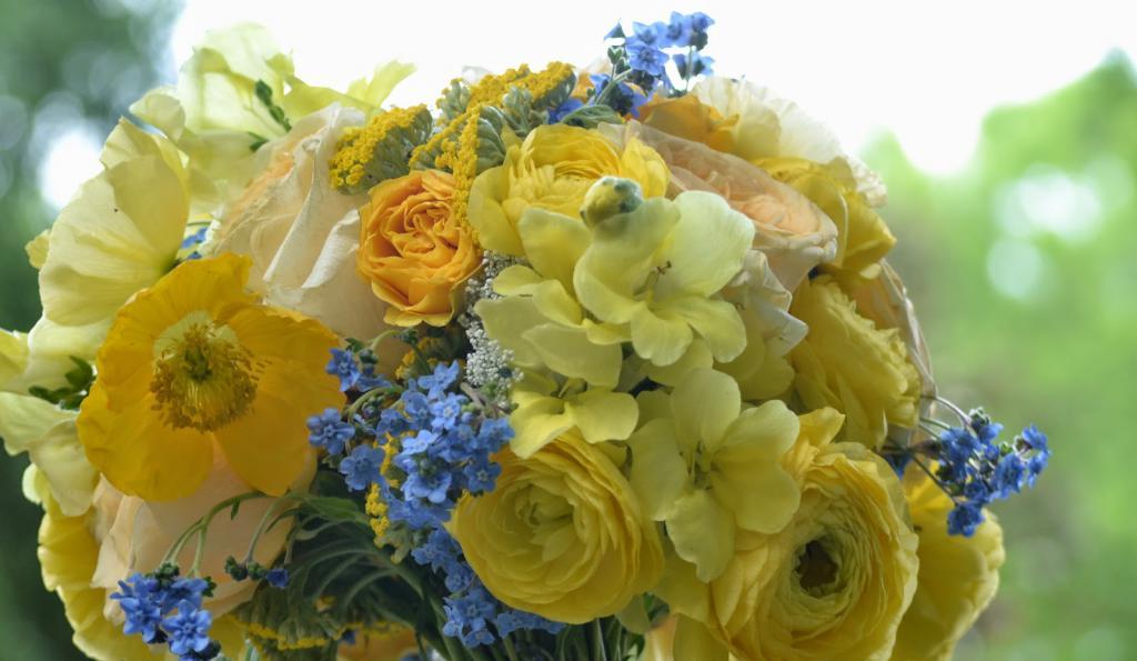незабудки фото цветов букетов