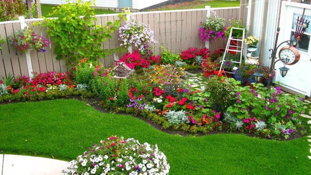 Какие цветы можно посадить на даче? Неприхотливые цветы для клумбы