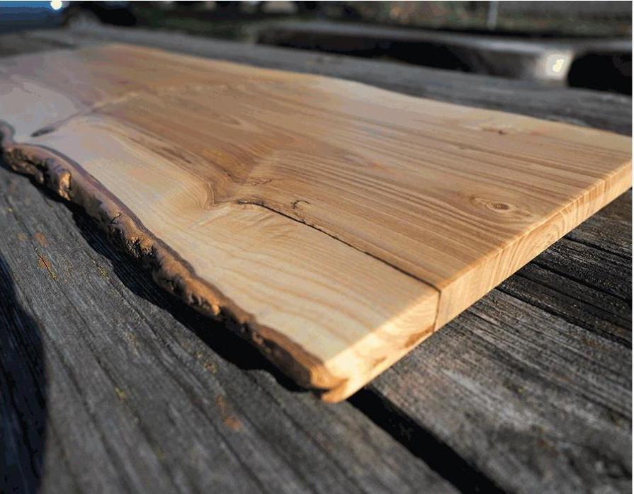 древесина ясеня